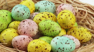stock-footage-coloured-quails-eggs-in-easter-nest